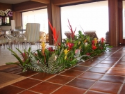 office-color-los-angeles-bromeliad-color-bowl-16