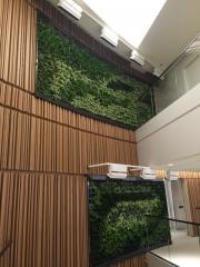 green-wall-installation-los-angeles-0089