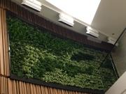 green-wall-installation-los-angeles-0091