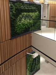 green-wall-installation-los-angeles-0100