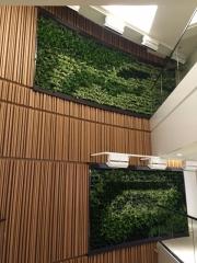 green-wall-installation-los-angeles-0102