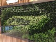 green-wall-installation-los-angeles-0103