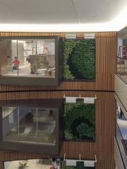 green-wall-installation-los-angeles-0110