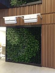 green-wall-installation-los-angeles-0130
