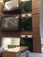 green-wall-installation-los-angeles-0137