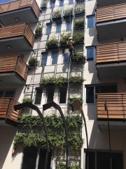 green-wall-installation-los-angeles-1004