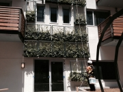 green-wall-installation-los-angeles-1031