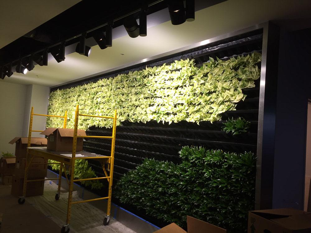 Cool Living Walls Vertical Plantscapes Photos   Wall Art Design .