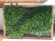 living-wall-exterior-los-angeles-0079