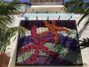 living-wall-los-angeles-emerald-bay-by-your-plant-service-0888