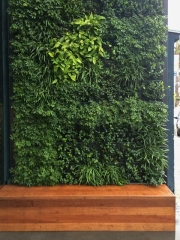 living-wall-EXTERIOR-TODD-REED