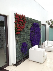 living-wall-exterior-hollywood-hills-3