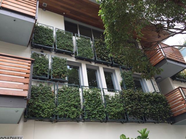 YPS Botanicals
