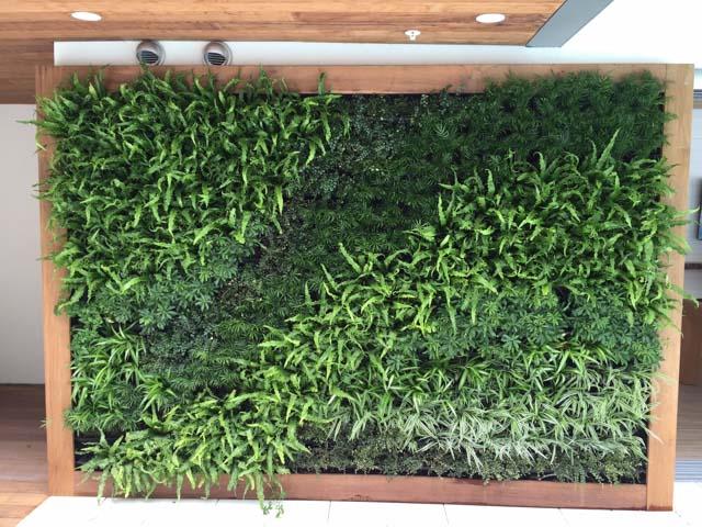 High Quality YPS Botanicals