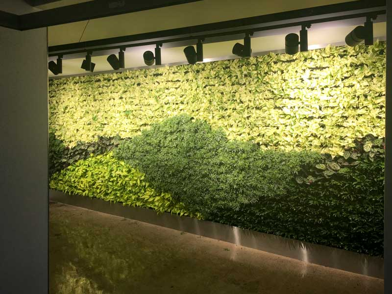 Living Wall Los Angeles, 5900 Wilshire Blvd 2