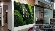 interior-living-wall-design-los-angeles-NIKE
