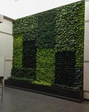 living-wall_0370