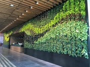 interior-living-green-wall-design-los-angeles-NETFLIX