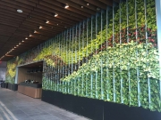 interior-living-wall-design-los-angeles-netflix-3