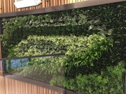 living-wall-los-angeles-commercial-interior-0103