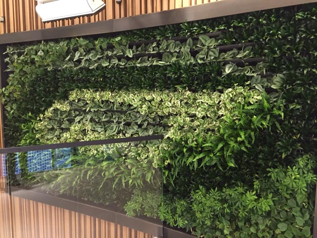 Charmant Living Wall Interior Projects