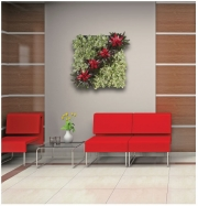 living-wall-gallery10