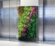 living-wall-gallery11