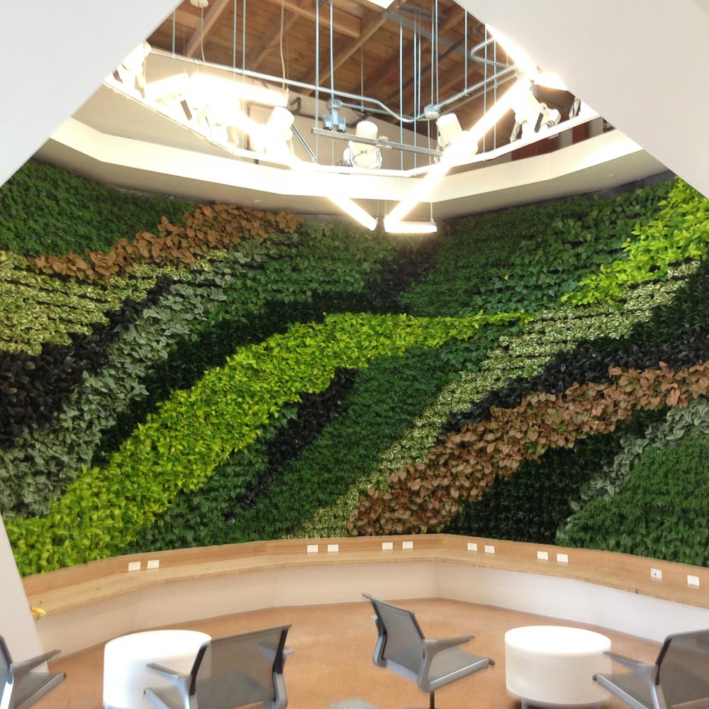 This Gallery Page Features Living Wall Indoor Plant Installations Using The  VersaWall System.