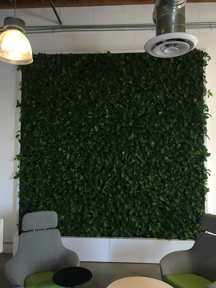 Good This Gallery Page Features Living Wall Indoor Plant Installations Using The  VersaWall System.