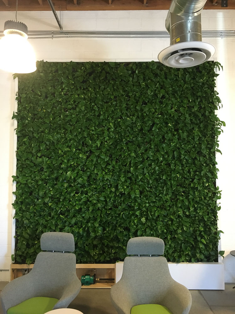 Delicieux This Gallery Page Features Living Wall Indoor Plant Installations Using The  VersaWall System.