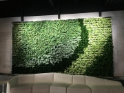 VersaWalls-living-green-walls-los-angeles-LIVENATION