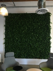 VersaWalls-living-green-walls-los-angeles-MASHABLE -1