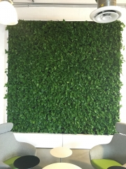 VersaWalls-living-green-walls-los-angeles-MASHABLE-2