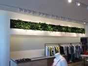 living-wall-gallery7-intermix-beverly-hills