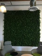 VersaWalls-living-green-walls-los-angeles-MASHABLE -1