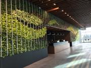 VersaWalls-living-green-walls-los-angeles-netflix-2