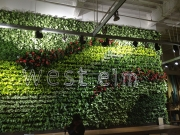 living-wall-gallery3-west-elm-scp