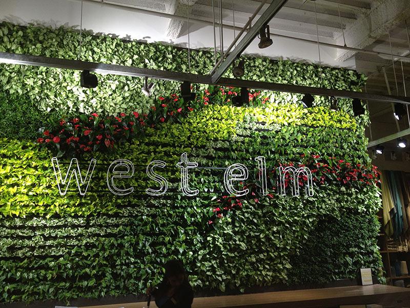 Living Walls Versawalls Interior Plant Design Los Angeles Indoor Plants