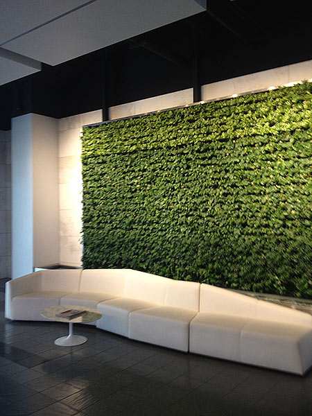 Elegant LIving Walls VersaWalls | Interior Plant Design | Los Angeles Indoor Plants