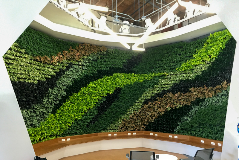 Living Wall Commercial Building, Los Angeles