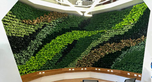 living-wall-los-angeles-commercial-interior-feature-220w