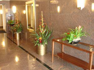 Plant Maintenance Great Ideas