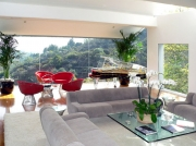 office-color-los-angeles-bromeliad-color-bowl-15