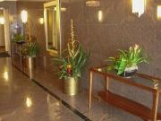 office-color-los-angeles-bromeliad-color-bowl-8
