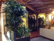 commercial-interior-landscape-los-angeles-by-yps-1