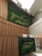 green-wall-installation-los-angeles-0089