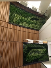 green-wall-installation-los-angeles-0102