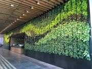 interior-living-green-wall-design-los-angeles-NETFLIX
