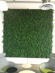 VersaWalls-living-green-walls-los-angeles-MASHABLE-2