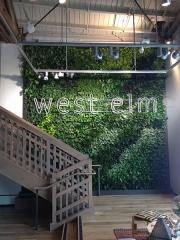 living-wall-gallery1-west-elm-los-angeles